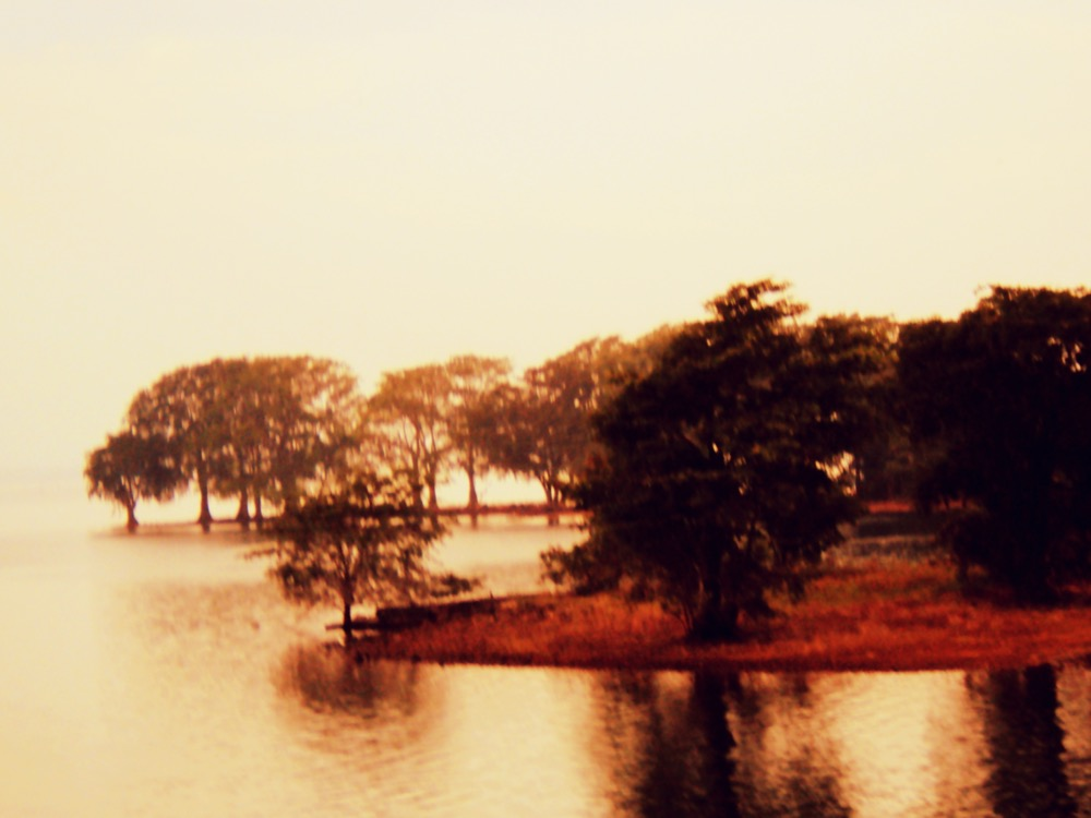 Udawalawe Lake