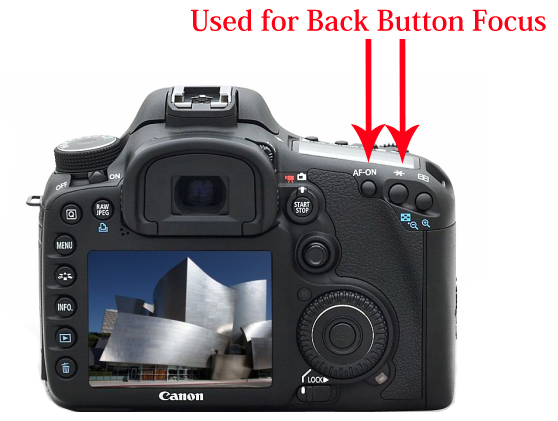 Which button for focusing in Canon