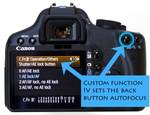 Setting up a Canon for Back Button Focus