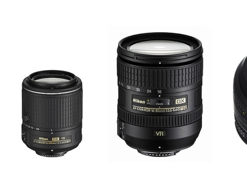 Top 4 Nikon Lenses for DX Cameras