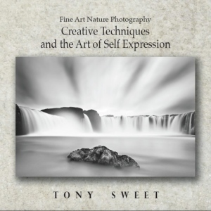 Creative Techniques and the Art of Self Expression - Tony Sweet